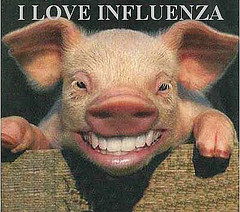 Do Swine love flue?